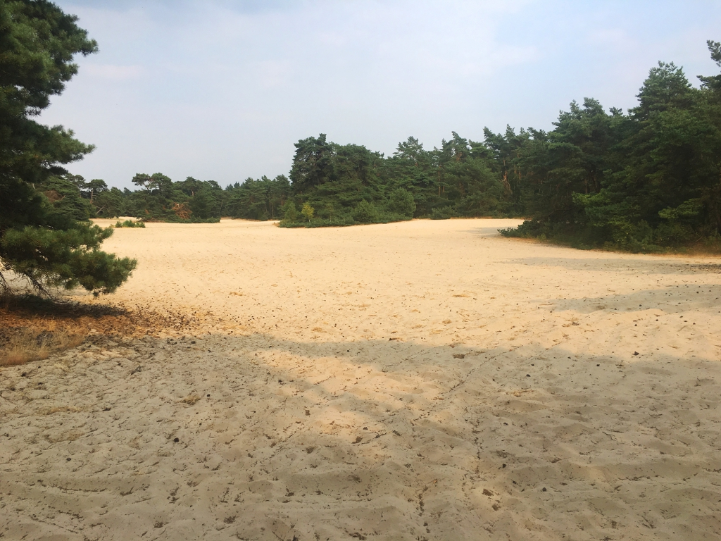 Ploeteren door het zand.