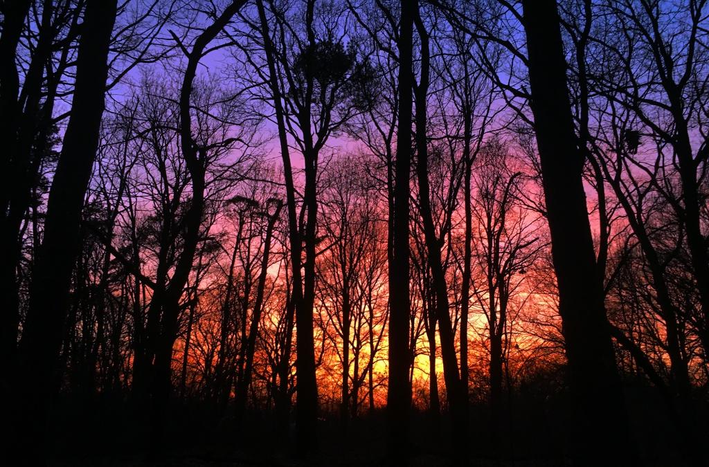 De ondergaande zon bij Holten.