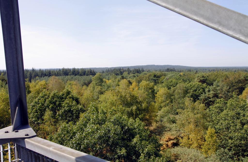 Op de uitkijktoren