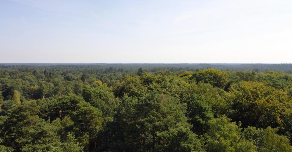 Uitzicht vanaf de Besthmenerberg