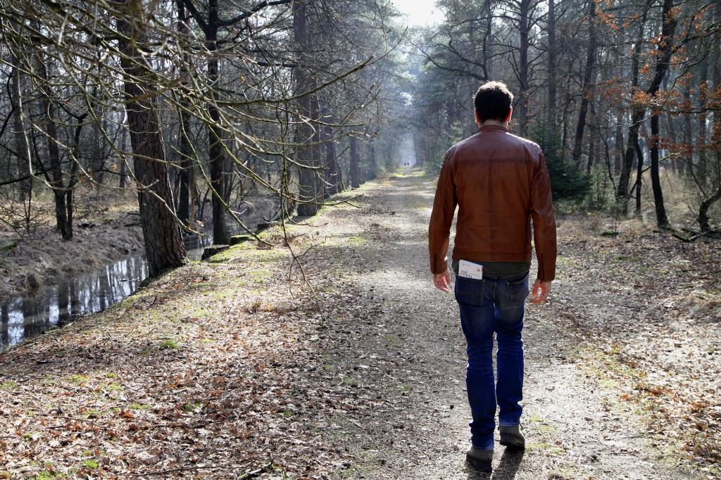 Landgoed Verwolde kent veel bos