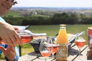Picknick in het Vlaamse Heuvelland
