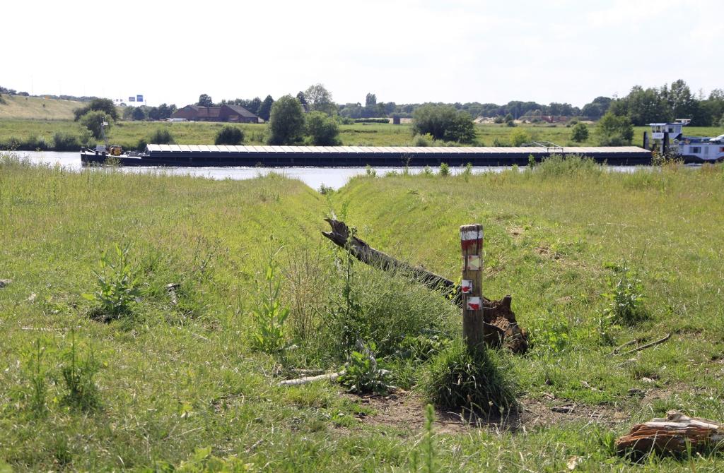 Een boot op de Maas