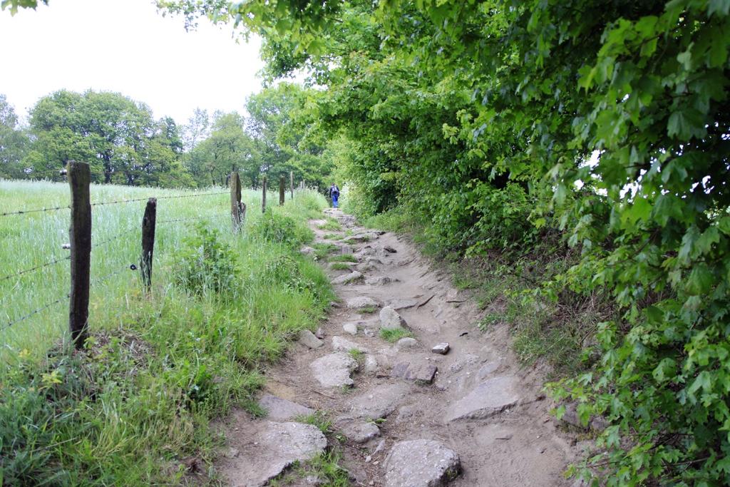 Over een pad met grote stukken steen