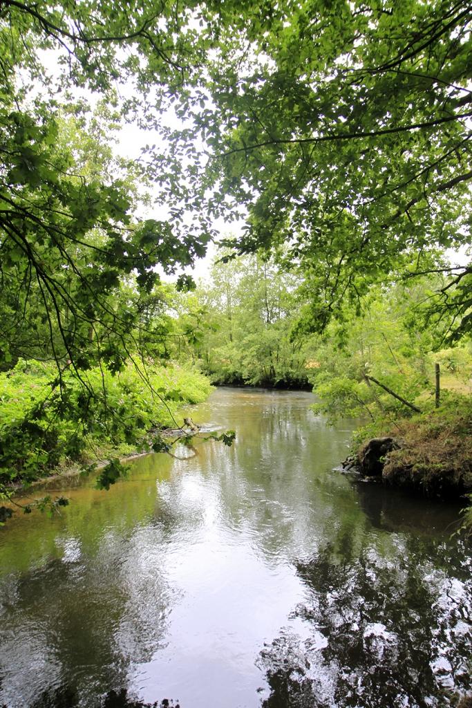 Pittoresk riviertje De Swalm