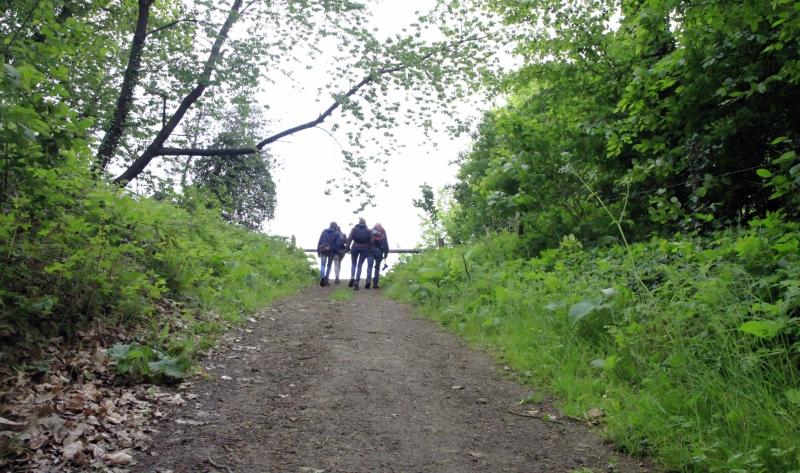 Wandelaars in het Heuvelland