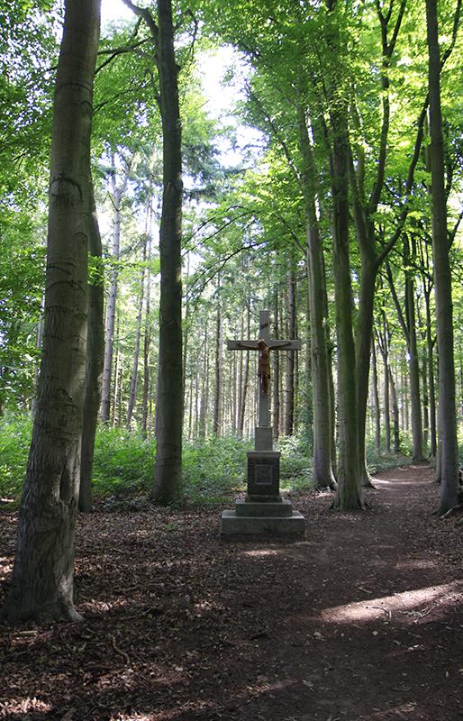 Een kruis midden in het bos